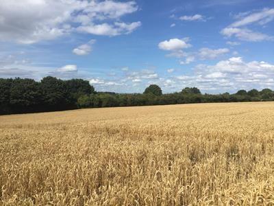 Thumbnail Commercial property to let in Cosmeston & Swanbridge Farmland, Lavernock Road, Penarth, Vale Of Glamorgan