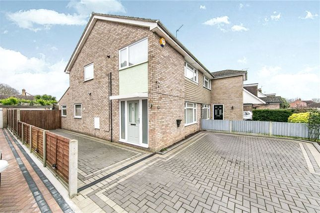 Thumbnail Semi-detached house for sale in Evergreen Drive, Colchester