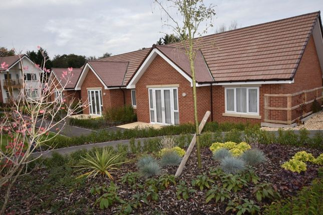 Thumbnail Bungalow for sale in 3 Lavender Mews, Charters Village, East Grinstead, West Sussex