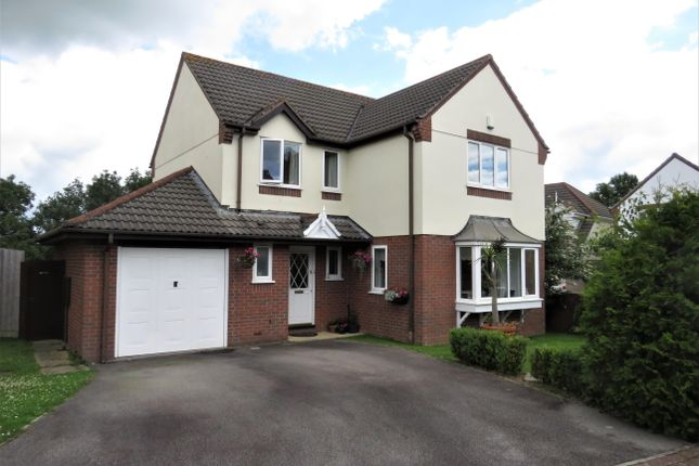 Thumbnail Property to rent in Highfield Park, Latchbrook, Saltash
