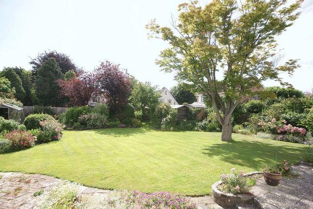 Garden of Beech Grove, Alverstoke PO12
