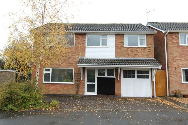 Thumbnail Detached house for sale in Holly Drive, Lutterworth