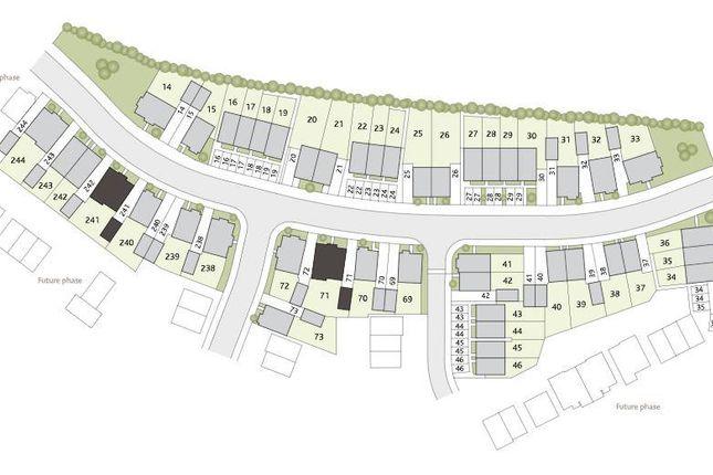 Site Plan Phase 1
