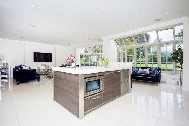 Kitchen/Family/Breakfast Room
