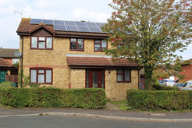 Thumbnail Detached house to rent in Duckworth Close, Willesborough, Ashford