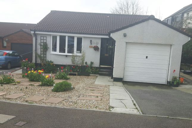 Thumbnail Detached bungalow for sale in Penwithick Park, St Austell, Cornwall