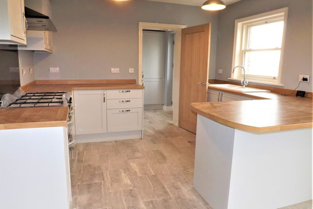 Thumbnail Detached house for sale in Black Barn, Gedney Drove End, Spalding