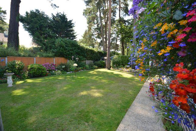 Garden of Widworthy Drive, Broadstone BH18