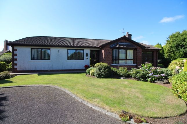 Thumbnail Bungalow for sale in Craigs Green, Carrickfergus