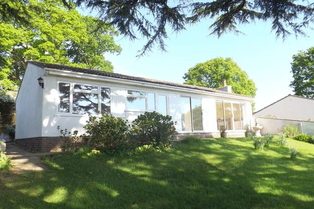 Thumbnail Detached bungalow for sale in Honey Ditches Drive, Seaton