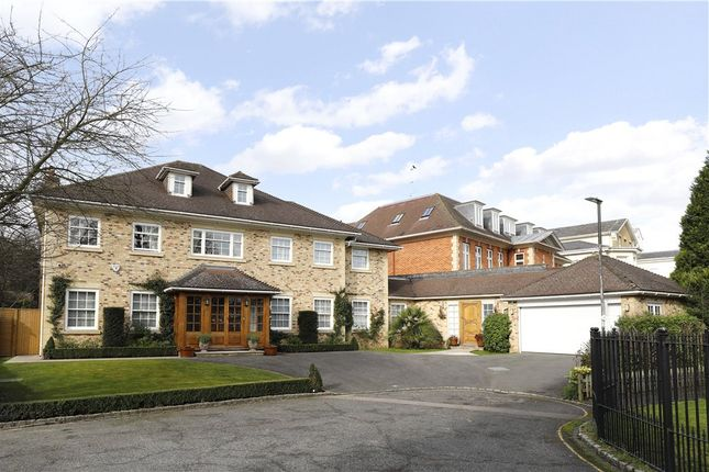 Thumbnail Detached house to rent in Greenoak Way, Wimbledon Common
