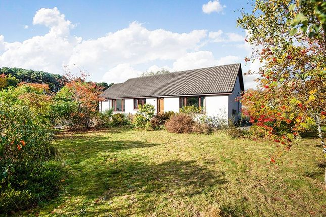Thumbnail Bungalow for sale in Braes Of Conon, Conon Bridge, Dingwall