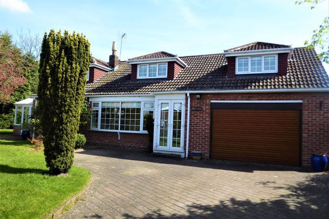Thumbnail Detached house to rent in Front Street, Naburn, York