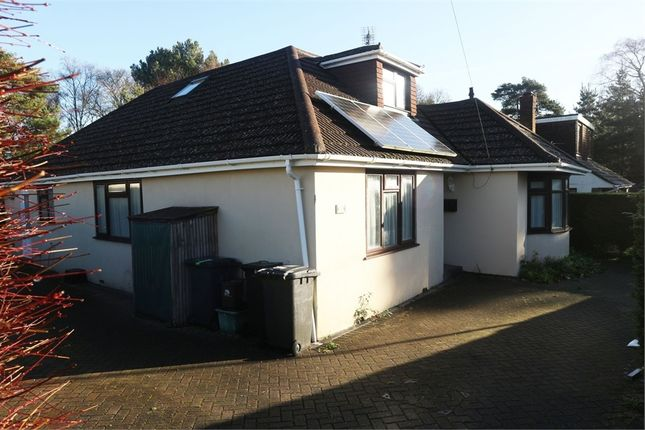 Thumbnail Detached bungalow for sale in Filleul Road, Wareham, Dorset