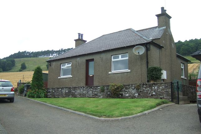 Thumbnail Detached bungalow to rent in The Bungalow, East Mains Of Dunnichen Dunnichen, Forfar