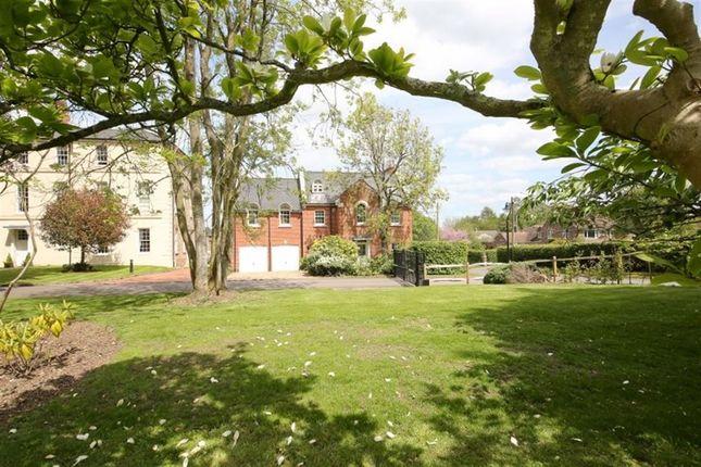 Thumbnail Detached house to rent in Birchfield, Sundridge, Sevenoaks