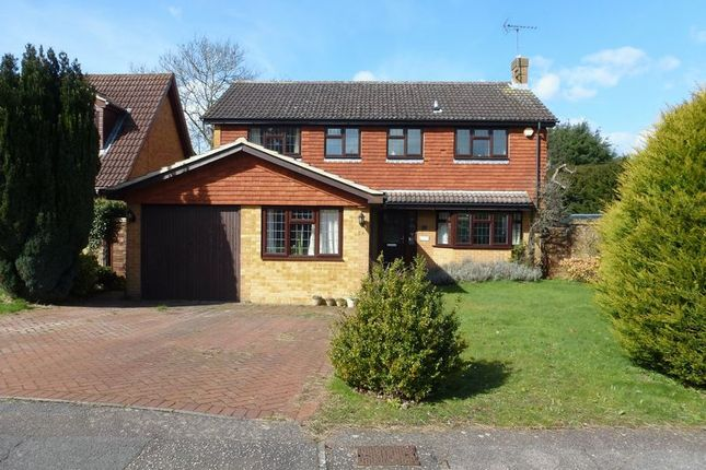4 bed detached house for sale in Pine Walk, Bookham, Leatherhead