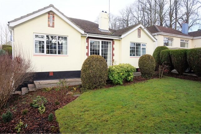 Thumbnail Bungalow for sale in Newton Road, Torquay