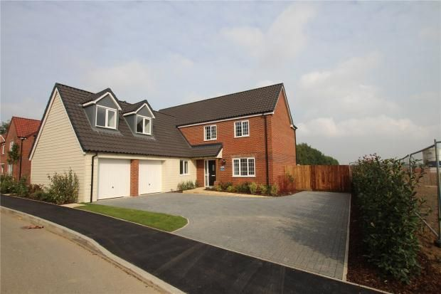 Thumbnail Detached house for sale in Saxon Fields, Blofield, Norwich