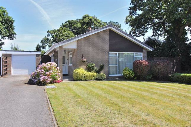 Thumbnail Detached bungalow to rent in Hazel Close, Highcliffe, Christchurch
