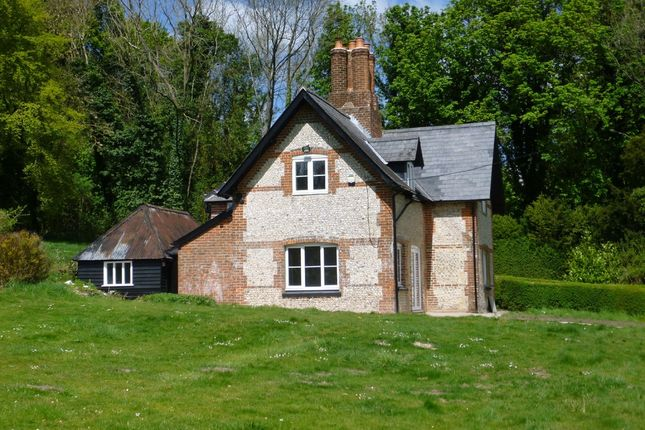 Thumbnail Detached house to rent in Abbotstone, Nr. Alresford, Hampshire