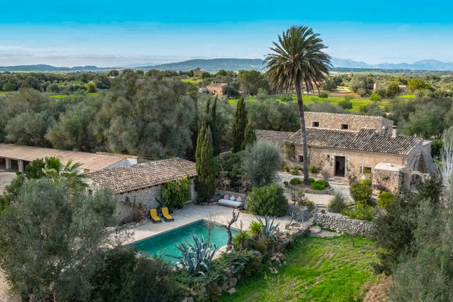 Photo of Manacor Countryside, Mallorca, Balearic Islands