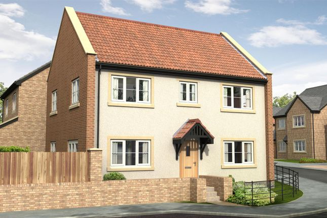 Thumbnail Detached house for sale in The Hazel - Nursery Gardens, Station Road, Stannington