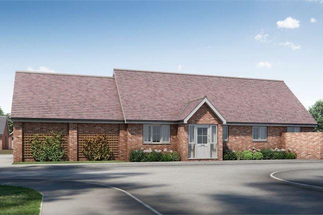 Thumbnail Detached bungalow for sale in Plot 14 Springfield Meadows, Little Clacton, Essex