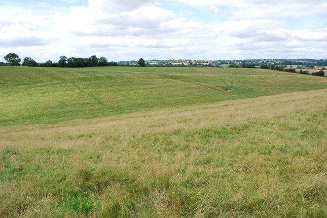 Thumbnail Farm for sale in Holdenby Road, East Haddon, Northampton
