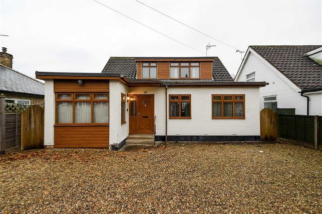 Thumbnail Bungalow to rent in South Lane, Hessle