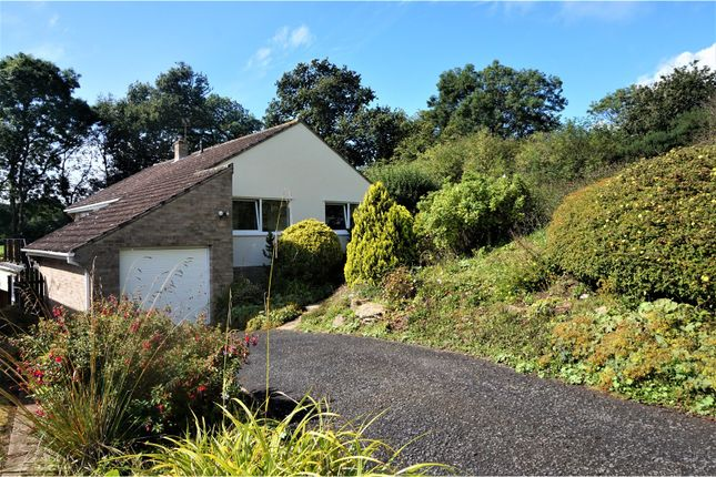 Thumbnail Detached bungalow for sale in Churston Rise, Seaton