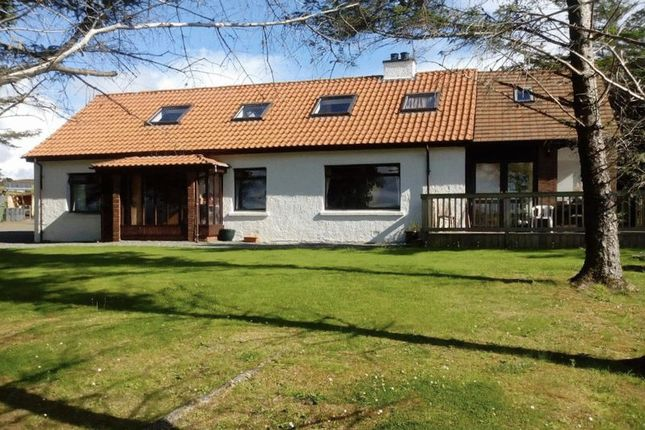 Thumbnail Detached house for sale in Aligro, Harlosh, Isle Of Skye