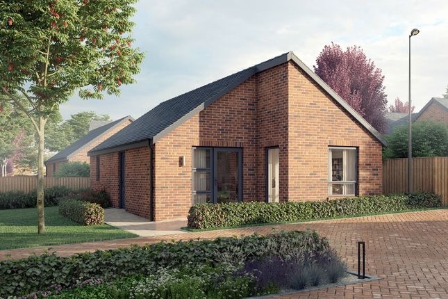 Thumbnail Detached bungalow for sale in Water Lane, South Normanton, Alfreton