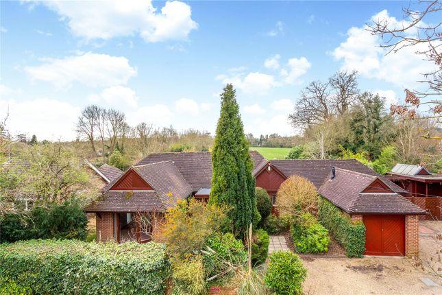 Thumbnail Detached bungalow for sale in Park Street, Slinfold, Horsham, West Sussex
