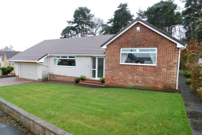 Thumbnail Bungalow for sale in Lyman Drive, Wishaw