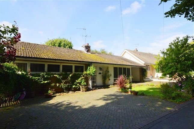 Thumbnail Detached bungalow for sale in The Rise, Eastgate, Hornsea, East Yorkshire