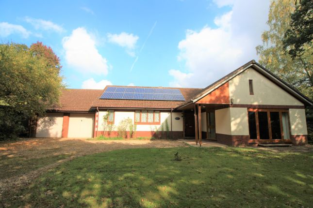 Thumbnail Detached bungalow for sale in Lower Broad Oak Road, West Hill, Ottery St. Mary