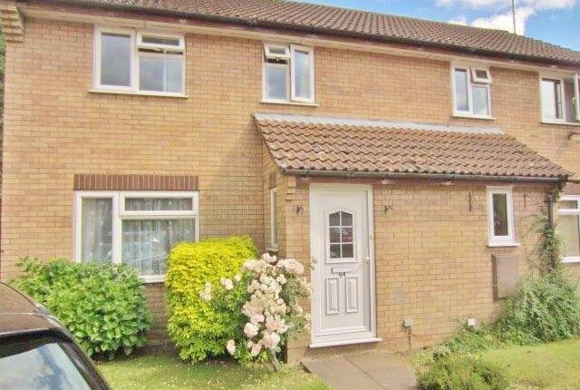 Thumbnail Semi-detached house to rent in Heldhaw Road, Bury St. Edmunds
