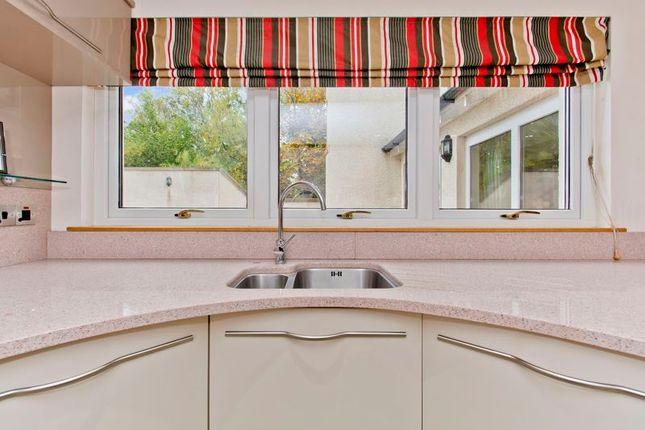 Kitchen Window of Graycliff, Panmurefield, Broughty Ferry DD5