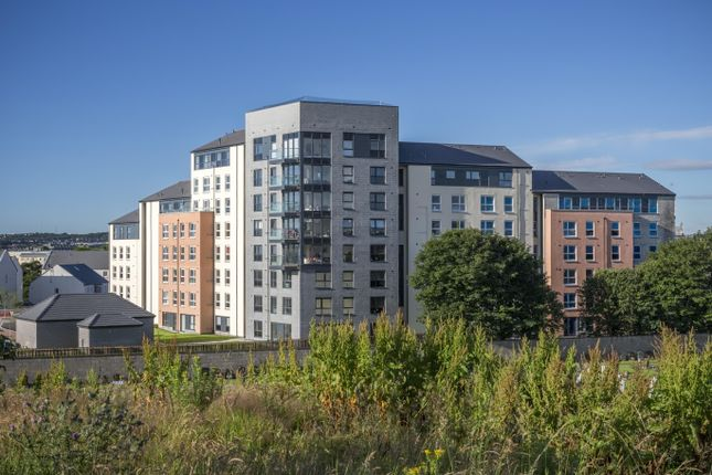 "Thumbnail Flat for sale in ""Kittiwake"" at Park Road, Aberdeen"