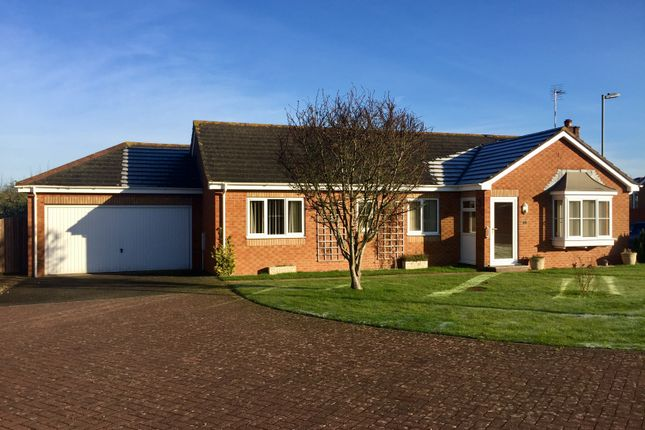 Thumbnail Detached bungalow for sale in Bramley Gardens, Whimple, Exeter