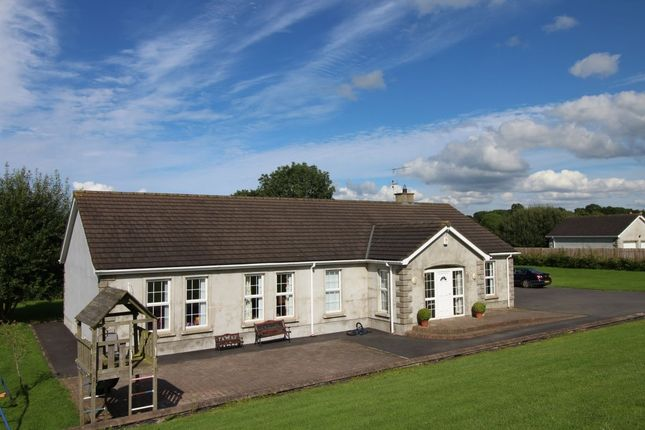 Thumbnail Bungalow for sale in Lough Road, Ballinderry Upper, Lisburn