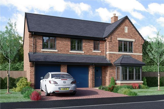 "Thumbnail Detached house for sale in ""The Buttermere"" at Armstrong Street, Callerton, Newcastle Upon Tyne"