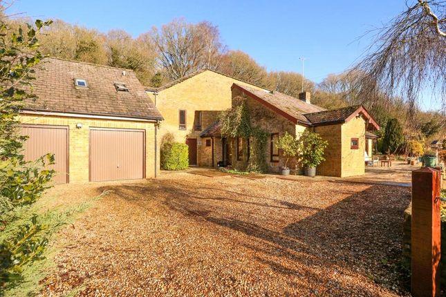 Thumbnail Detached house for sale in White Lane, Hannington