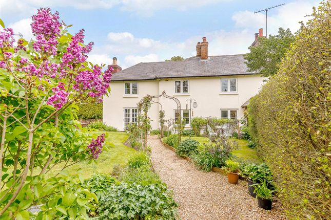 Thumbnail 4 bed semi-detached house for sale in South Street, Ropley, Alresford, Hampshire
