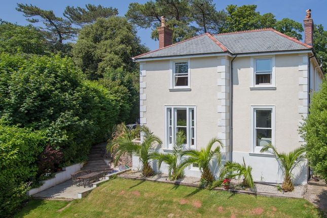 Thumbnail Detached house for sale in Hunsdon Road, Torquay