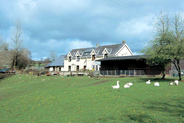 Thumbnail Detached house for sale in Trehowel Fach, Glandwr, Whitland, Pembrokeshire