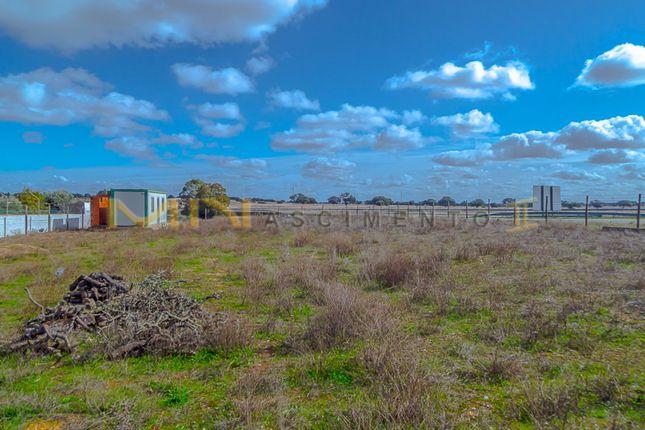 Thumbnail Land for sale in Grandaços Village, Ourique (Parish), Ourique, Beja, Alentejo, Portugal