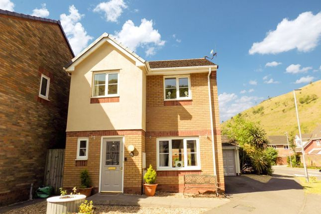 Thumbnail Property to rent in Ynys Y Gored, Velindre, Port Talbot
