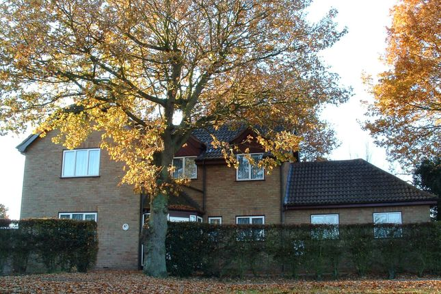 Thumbnail Detached house for sale in Mill Lane, Birch, Colchester